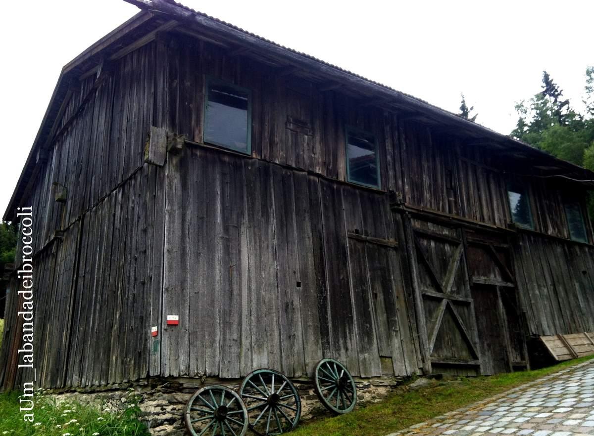 Bayerischerwald fra natura, benessere e buon cibo (anche glutenfree)